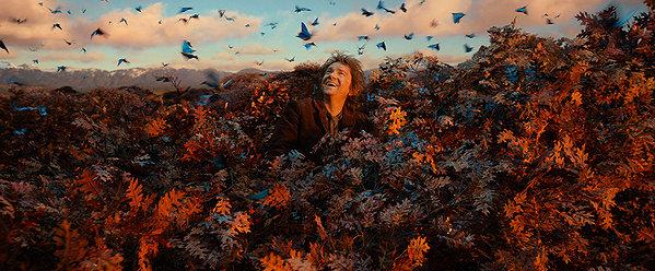hobbit 2_pic